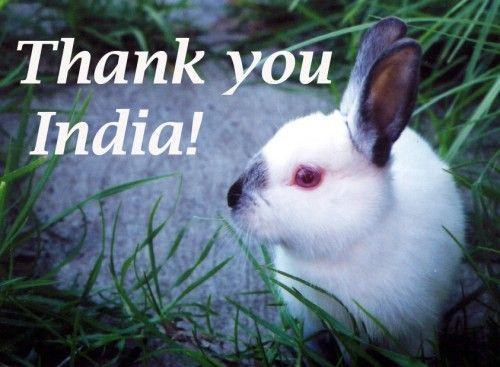 Good News! India Ban