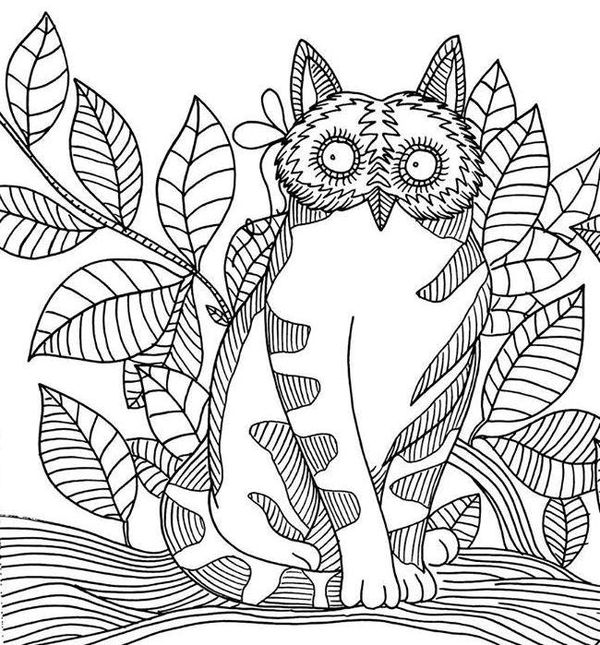 Cats And Colouring Pages On Pinterest