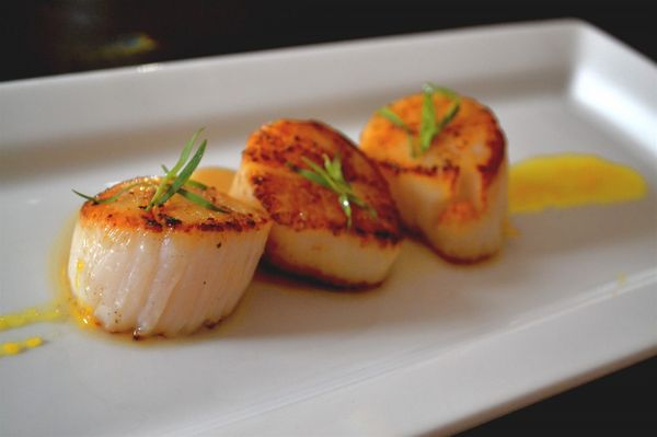 * Scallops in Meyer Lemon Sauce * a light and healthy summer dish with sweet meyer lemons.