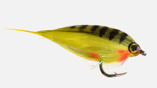 Low Fat Minnow - Per