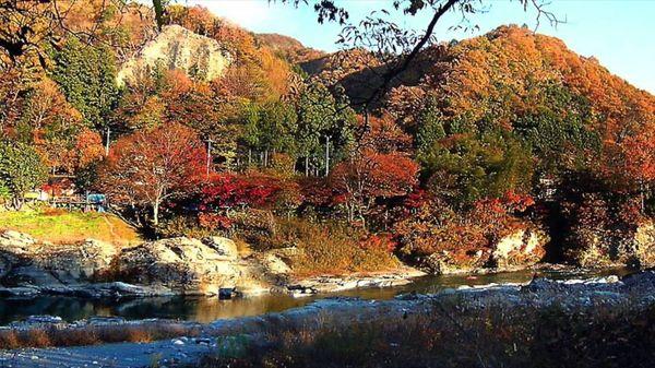 【日本紅葉の名所100選】長瀞(埼玉県) (Autumn leaves, 단풍, les feuilles d'automne, hojas de otoño)