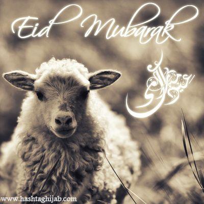 Eid Mubarak lovelies
