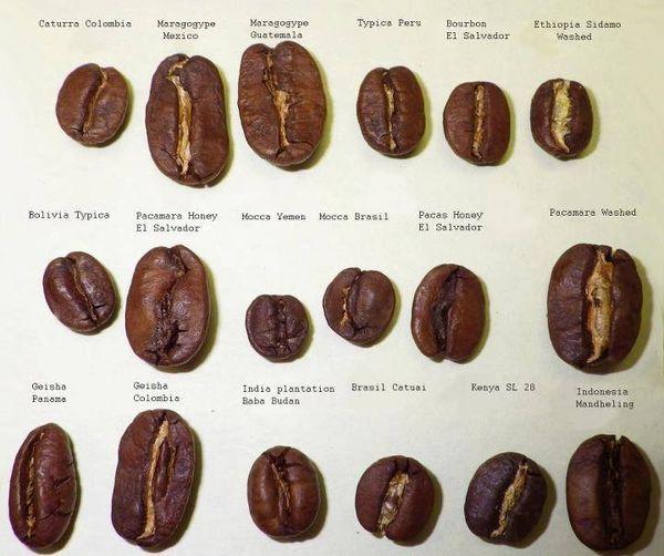 気軽に楽しめるおいしいコーヒー豆のおすすめ。初心者でも選びやすくまとめました。