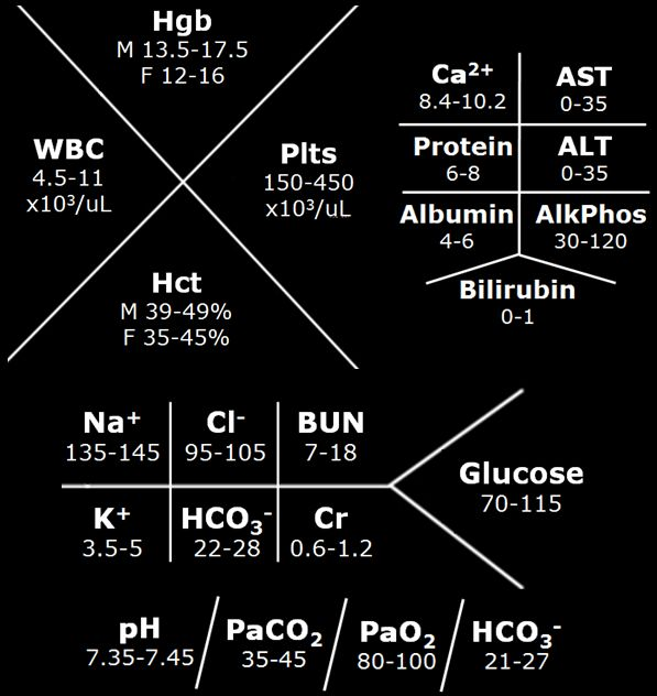 Lab Value Fishbone Diagram | Car Interior Design