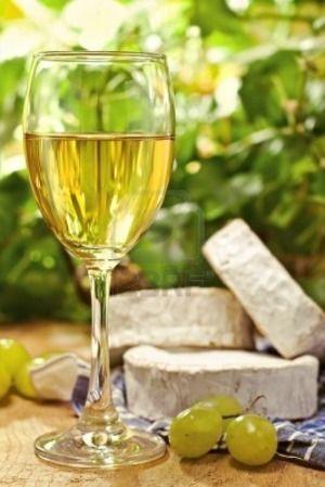 白ワイン好きに朗報!白ワインには赤ワインにも負けない美容効果があった!