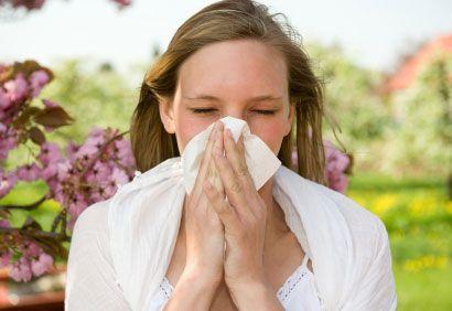 花粉症にお茶が効く?注意点も合わせておすすめ10種類をご紹介