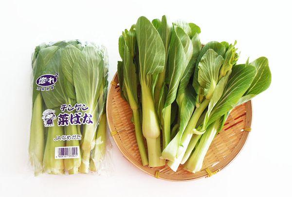 「チンゲン菜ばな」 青梗菜の茎を伸ばし花芽をもたせた野菜で、とうが立ち花のついた「青梗菜」のことです。 露地栽培で収穫される、季節限定の野菜になります。  とうが立ったお野菜は美味しくない印象がしますが、「チンゲン菜ばな」のとうの部分(花芽と茎)は、クセがあまりなくとても軟らかで甘い「菜の花」の美味しさがします。 もちろん「青梗菜」の風味と食感も味わえます。  和え物やおひたし・お漬物・炒め物などがおすすめです。