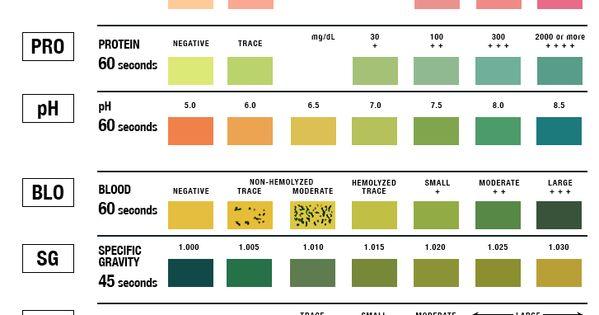 Similiar Lab Test Tube Color Charts Keywords