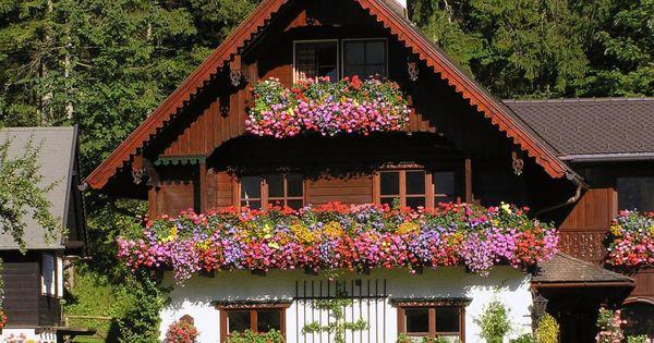 Home gardenideas for beauty