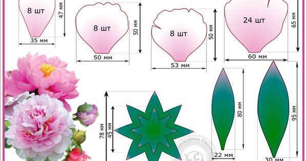 Как сделать выкройки цветов