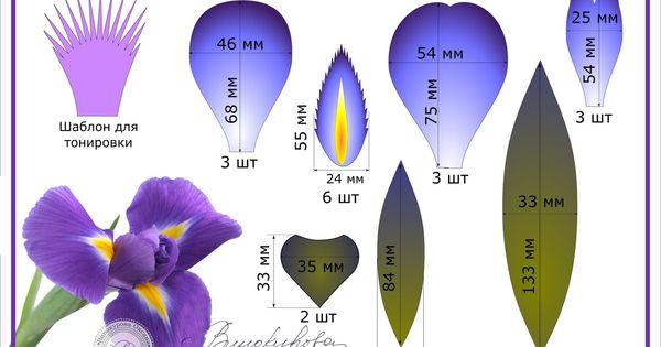 Цветы из фоамирана на ободок