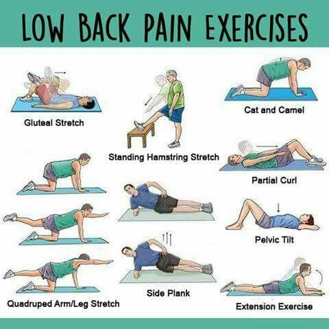 1000+ ideas about Lower Back Pain Exercises on Pinterest ...