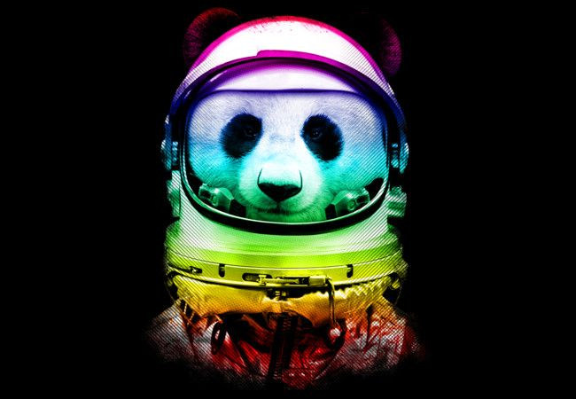 Space Panda! Print, t-shirt, phone case | To the Gifting ...