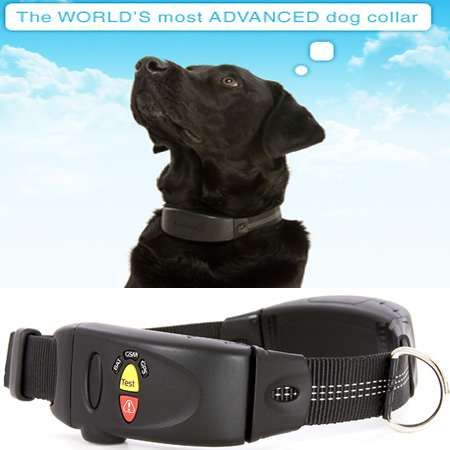 dog collar tracking device iphone