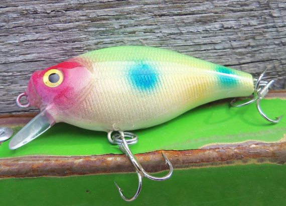 Custom fishing lure painted crankbait handpainted tackle for Personalized fishing lures