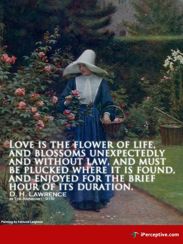 D H Lawrence Quotes About Love : ... Lawrence http://iperceptive.com/authors/d_h_lawrence_quotes.html