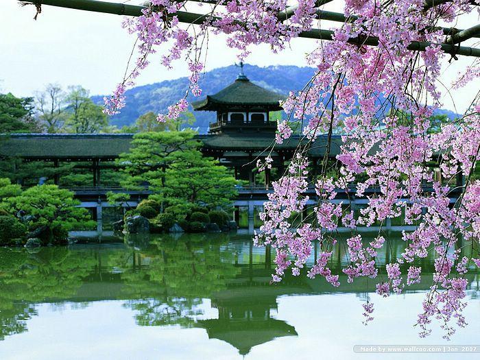 Garden In Kyoto Zen Garden Japanese Gardens Pinterest