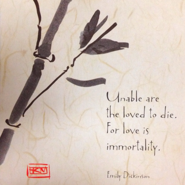 quote by emily dickinson someday pinterest