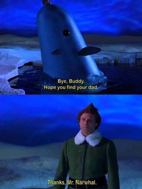 Bye Buddy!