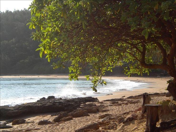 Moloaa Beach House Rental