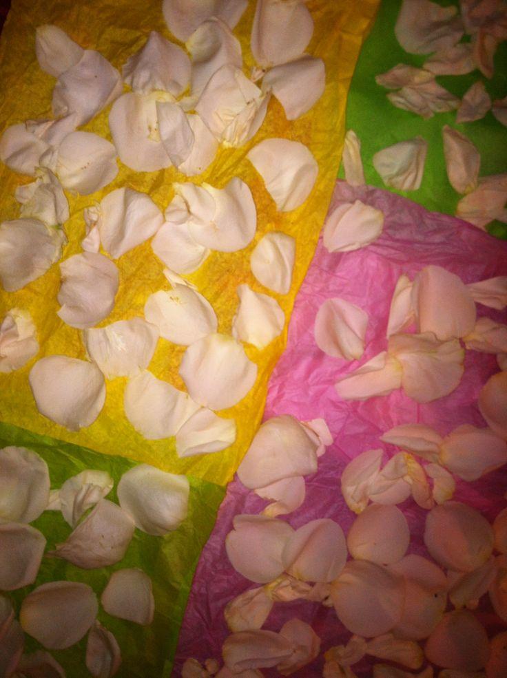rose petals craft ideas pinterest