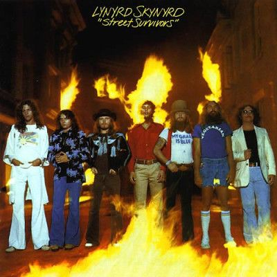 Album covers time com fell in love with skynyrd on this album and i