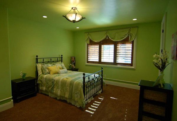 Bedroom Paint Ideas Painting Traditional Green Bedroom Apple And Orange Pinterest