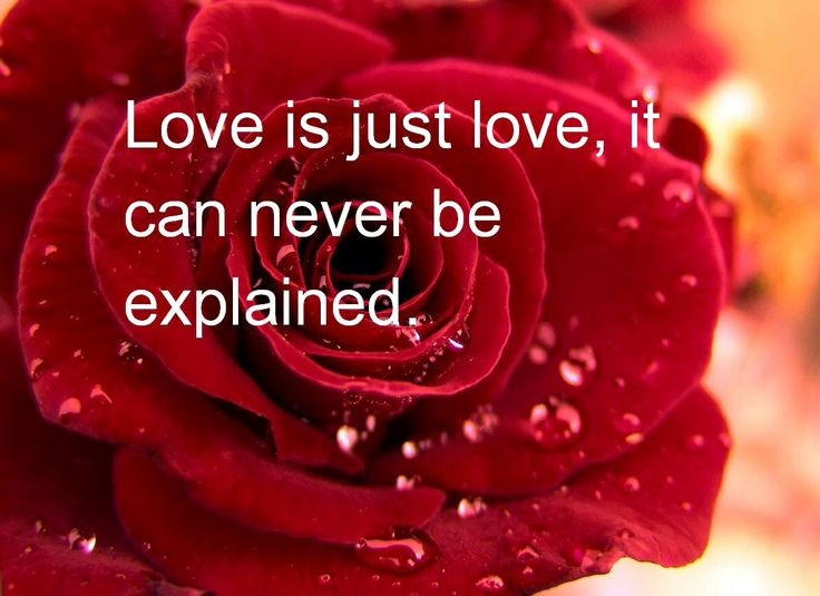 love can 39 t be explained beautiful love quotes pinterest