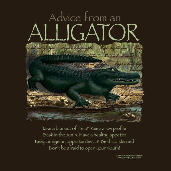 alligator | Quotes, Sayings & Humor | Pinterest