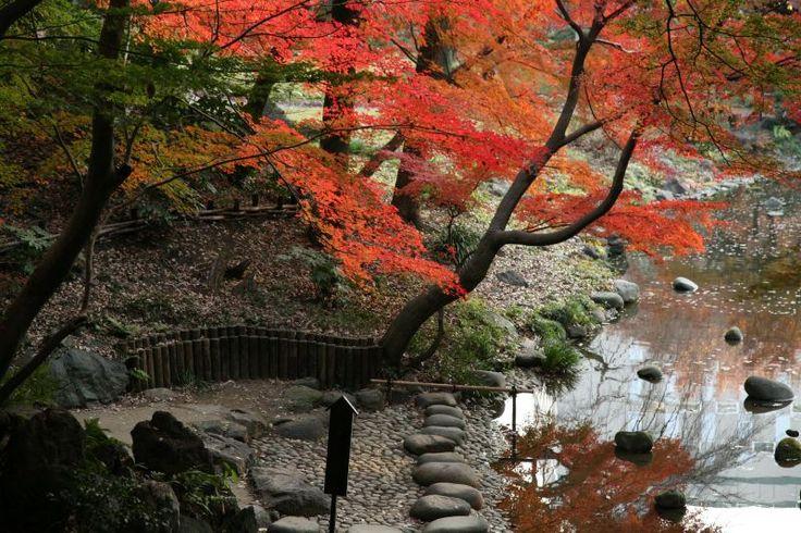 koishikawa korakuen jardin jardin parc pinterest