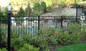 Landscaping around the pool fence poolhouse pinterest - Pool fence landscaping ideas ...