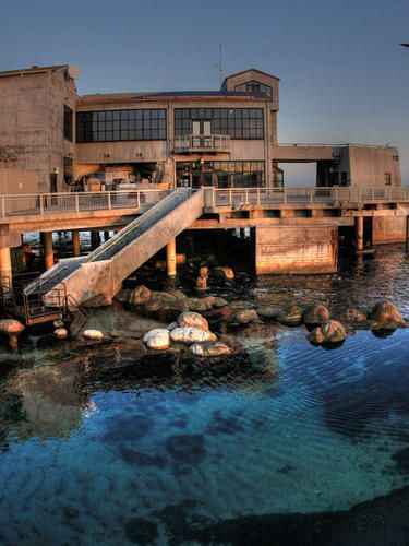 Monterey Bay Aquarium, Monterey, California, United States