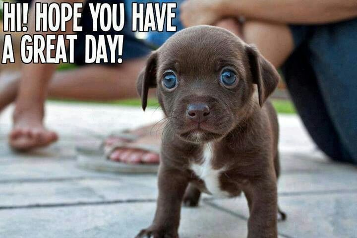 Have a great da... Cute Have A Great Day At Work