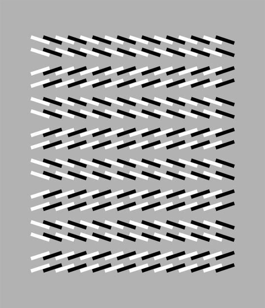 Optical illusions and visual oddities   Brain Teasers   Pinterest