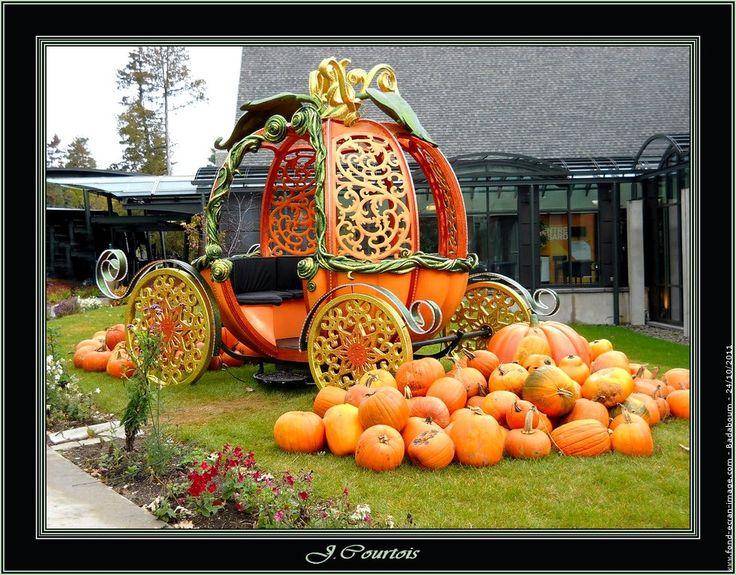 Photo deco citrouille halloween pinterest - Deco citrouille pour halloween ...