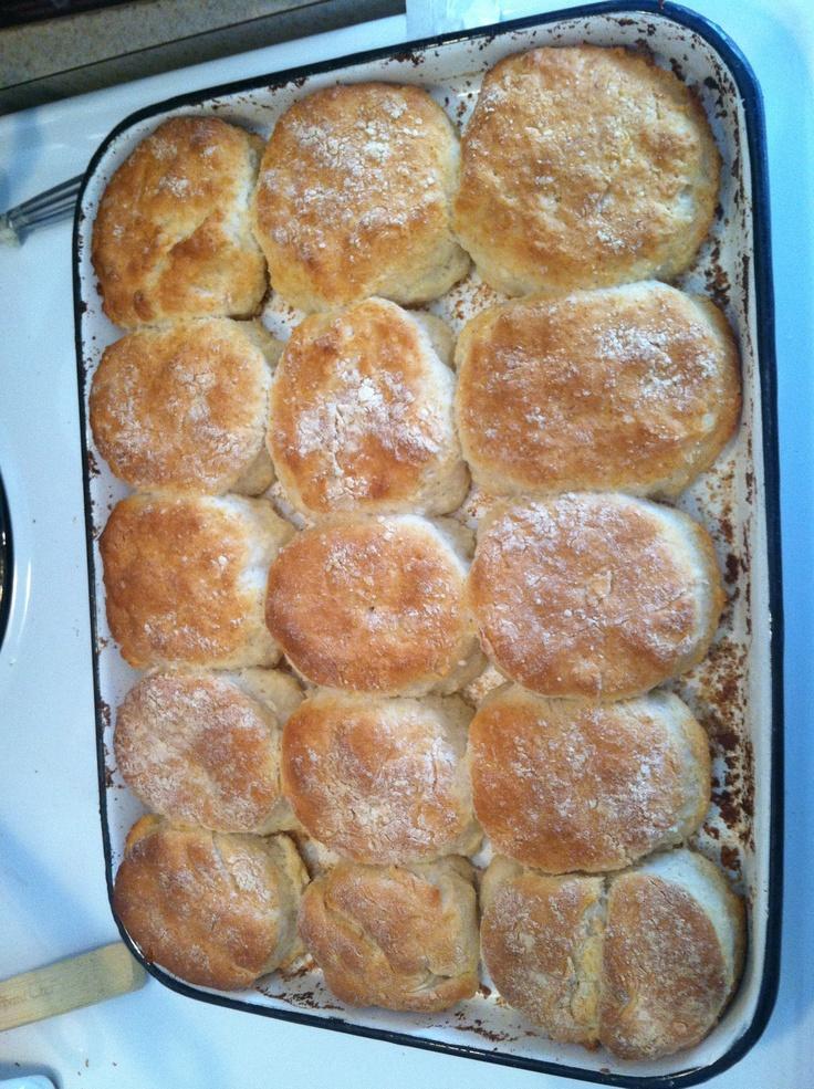 Biscuik, sour cream, 7up biscuits! | Rollin' in Dough | Pinterest