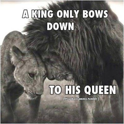 A king only bows down to his queen quotes relationships quote relationship queen king relationship quotes Big Cat, Queen...
