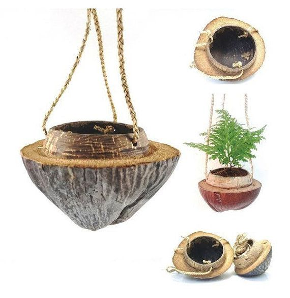 How to Make a Coconut Shell Hanging Basket advise