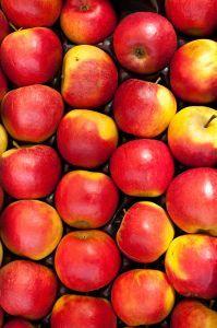 wild rice salad w apples | Recipes - Salads | Pinterest