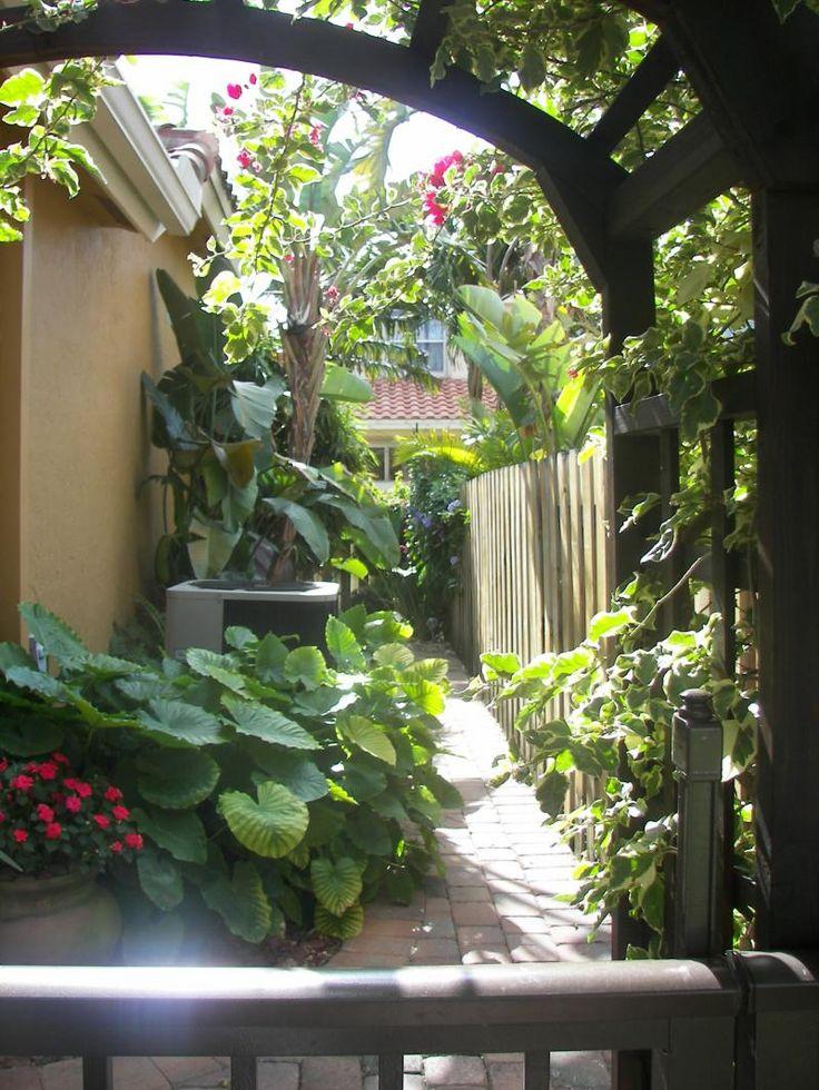 Florida Tropical Garden Backyard
