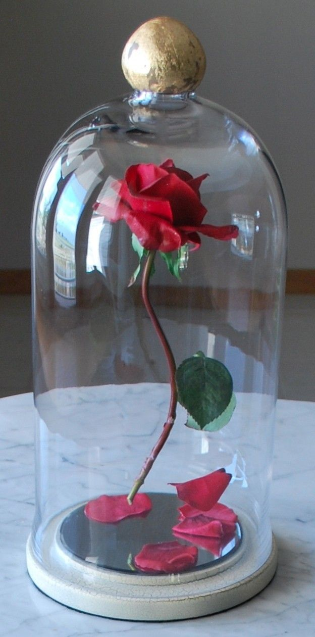 Enchanted Rose Centerpiece : Pin by donna burgess on disney movies stuff pinterest