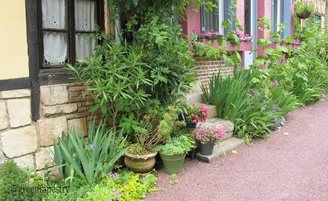 small cottage container garden cottages pinterest