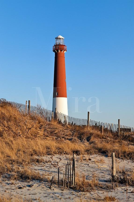 Jocelyn Long Island
