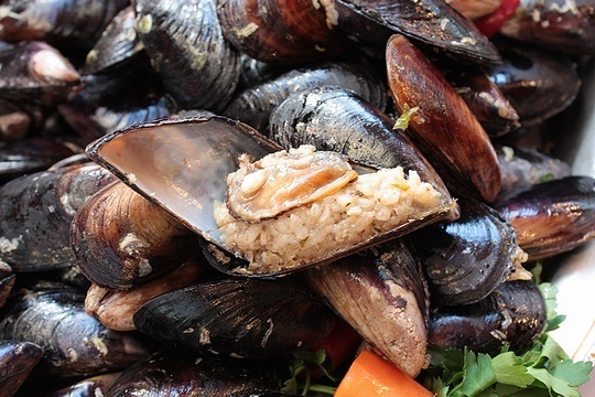 Stuffed mussels in Istanbul. | Turkish Food and Drink | Pinterest