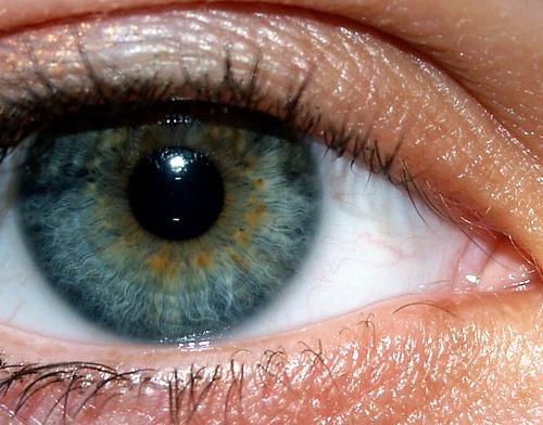 yellow eyes human - photo #8