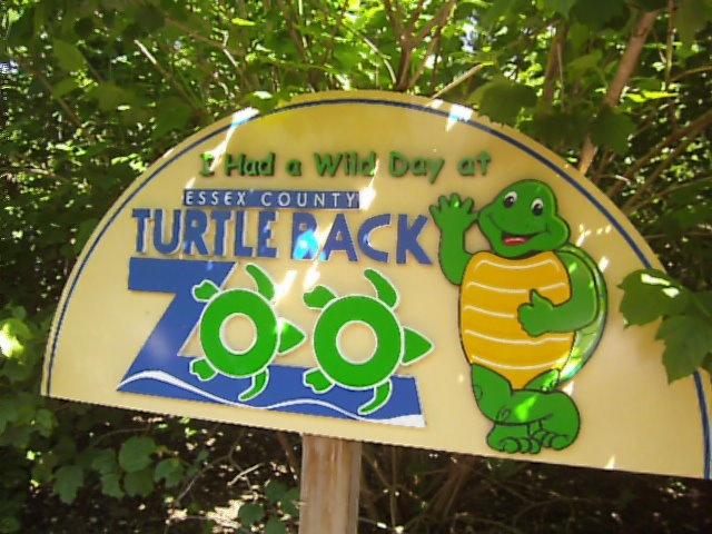 Turtle back zoo coupons discounts