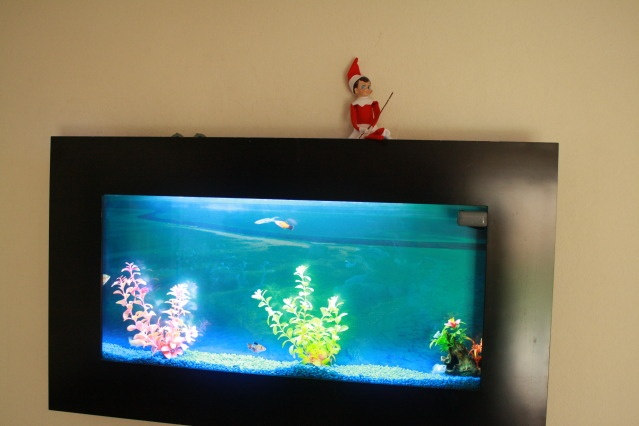 fishing in our fish tank Elf on the Shelf Pinterest