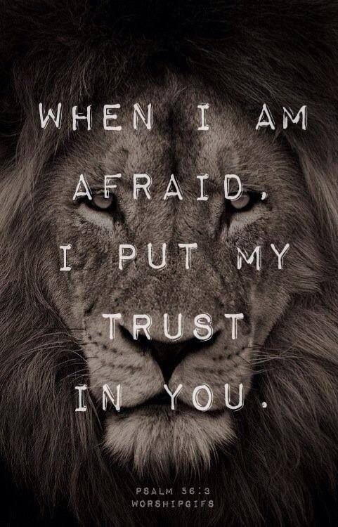Bible Quotes From The Lion. QuotesGram