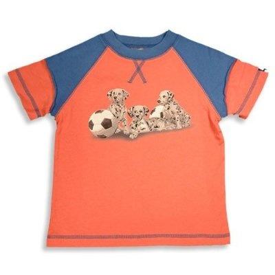 Dogwood Clothing Boys Short Sleeve Tee Shirt Orange Blue