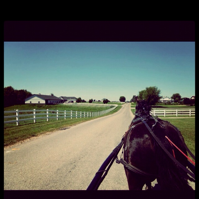 Amish Country Indiana Images